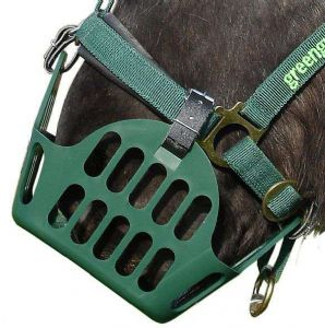 Greenguard Grazing Mask